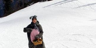 Wintersport in Boven-Oostenrijk