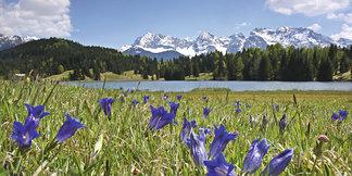 Zu Enzianblüte und Bergfrühling 2018 ins Karwendel - ©Alpenwelt Karwendel, Rudolph Pohmann