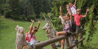 3 motivi per cui l'Alpe Cimbra è perfetta per i bambini ©www.alpecimbra.it