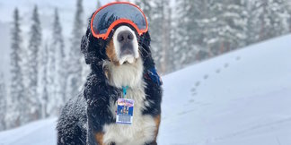 October Snow Blankets West - © Loveland Ski Area, Dustin Schaefer