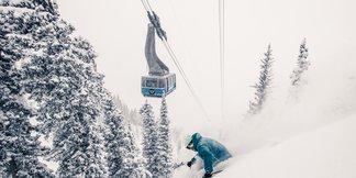 Snowbird Snow 101 - ©Liam Doran