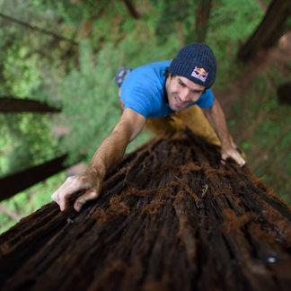 Chris Sharma: Treeclimbing