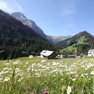Das Kleinwalsertal im Sommer - ©Kleinwalsertal Tourismus | Frank Drechsel