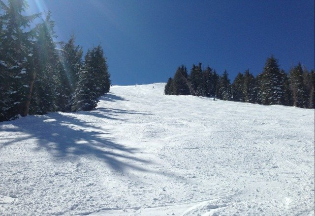 skied kirkwood today (sunday) - excellent snow, great weather, pretty short liftlines.  fantastic day!