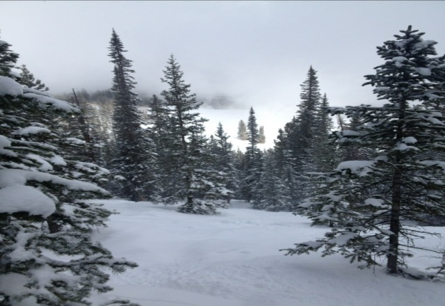 another great day at beaver, lots of fresh and no one on the hill.