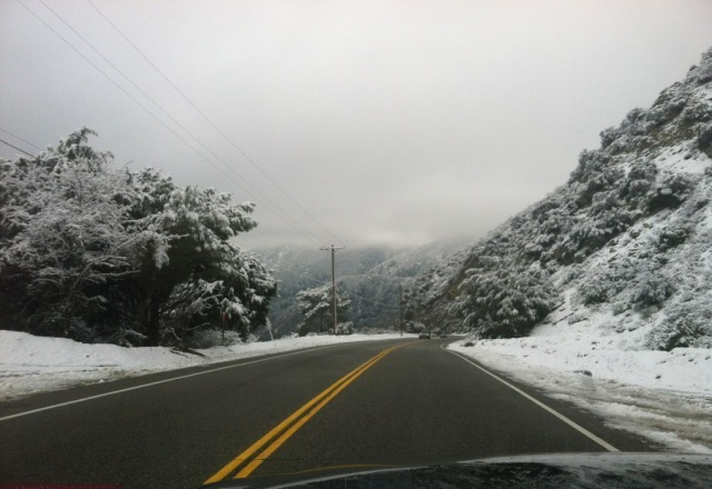 snow is awsome! great base... it has been windy so check with the  resort  to make sure they are open before heading up!