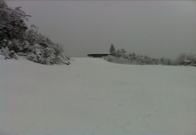 great day! Snowed all day. Best trails were No Regrets and Jacobs Ladder. Great Pic of Rose brook Express