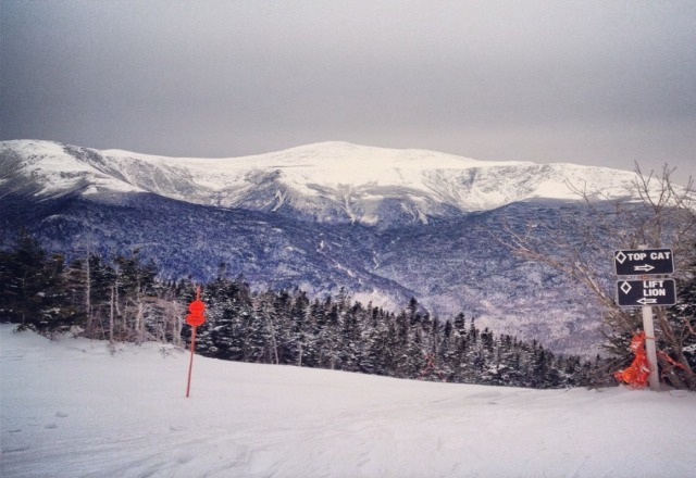 view from the summit looking at Mt. Washington and Tuckermans Revine!