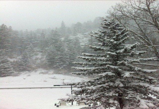 sunday morning snow!