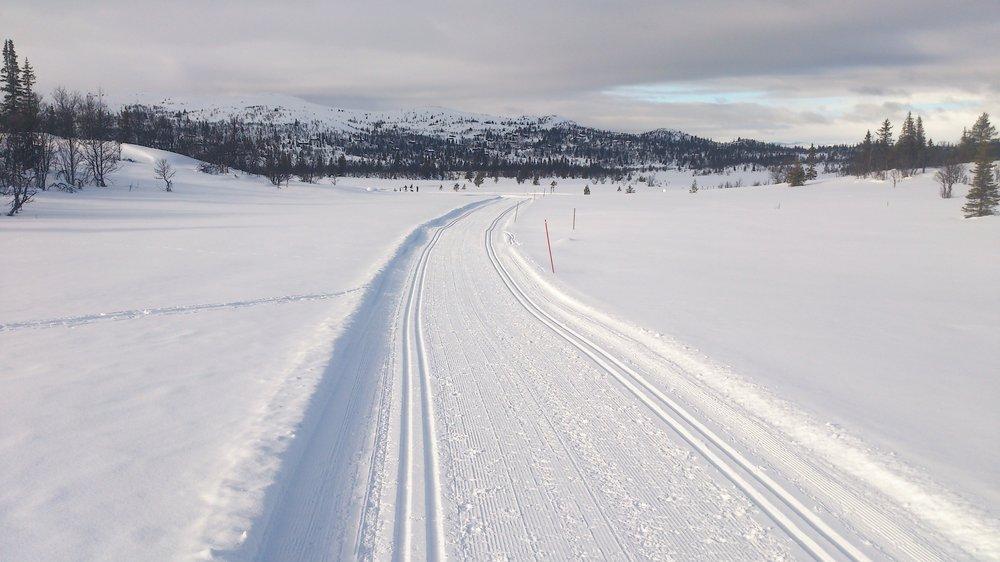 Flotte skiløyper på Sangefjell - © Ståle Dalseide