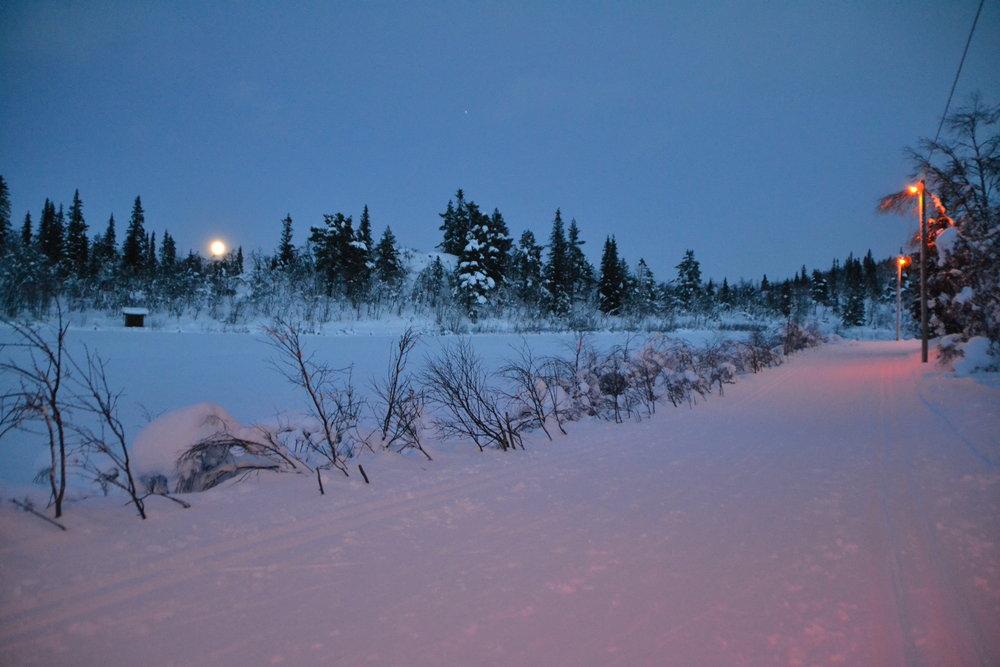 Lysløypa på Liatoppen Skisenter - © Ål Utvikling AS