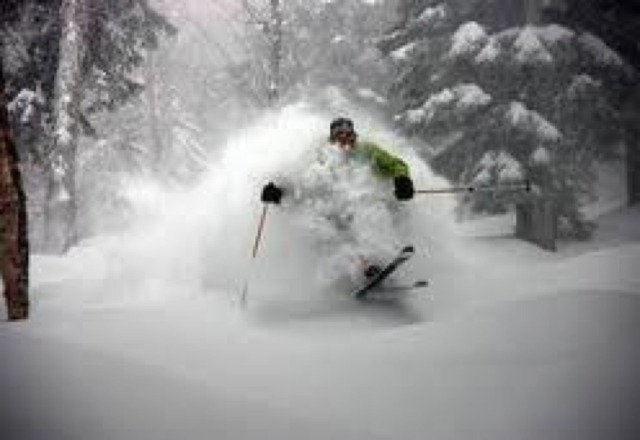 great skiing in some glades