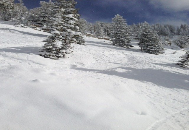 great day at alta