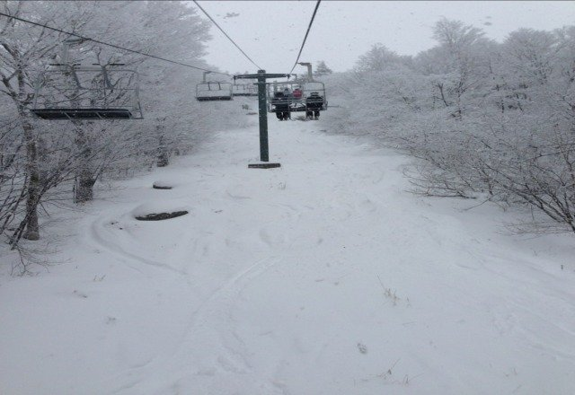 a beautiful white out today. powder dumped from the sky. awesome day.
