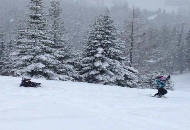 Thursday was one PRIMO POWDER DAY...possibly best day of season thus far!  Lots of snow days yet to come at The Wood...