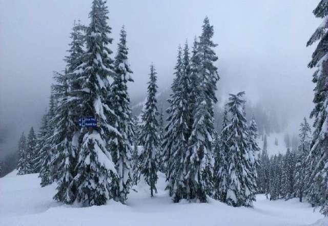 Amazing day, no one on the mountain and the groomers did a great job!