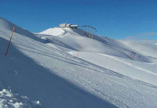 Skiing powder in Still Creek Basin at Timberline Lodge. Photo courtesy of Timberline Lodge.