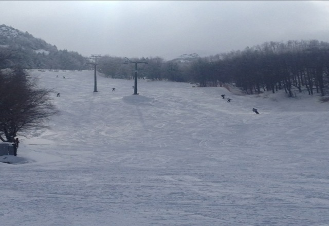 3 great days there. busy on sunday with kids racing, monday perfect conditions and saturday lots of new snow.. must be 3m now and more snow forecast.