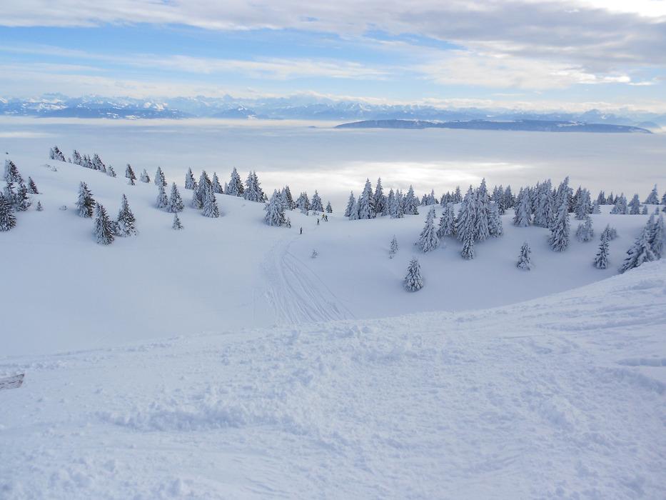 Espace hors piste de Monts Jura, une succession de vallons et de combes où vous pourrez laisser votre trace... - © OTPGF