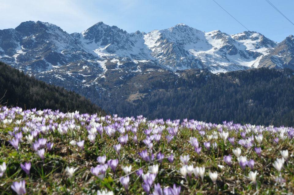 Val d'Ultimo - Alto Adige