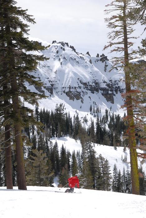A skier takes in the view at Sugar Bowl Ski Resort, California