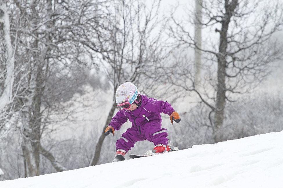 Kan man gå kan man også køre på ski... - © Kalle Hägglund