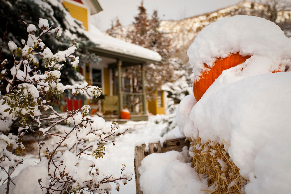 Snowy fall for Aspen/Snowmass. - ©Jeremy Swanson