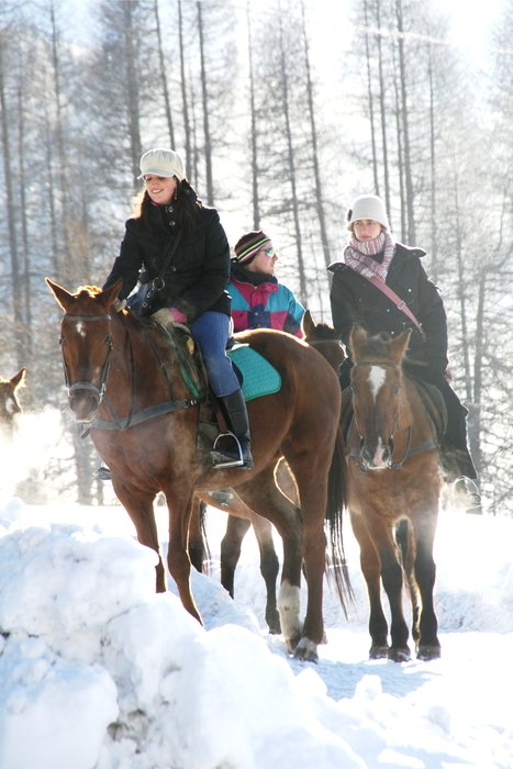 Winter horse riding in Livigno - ©Livigno.eu