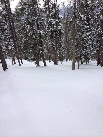 Untouched powder on the outback!