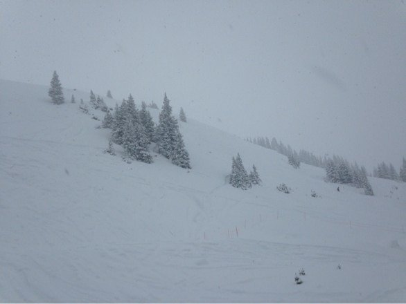 Uber nar nar. Fresh tracks all day. Snowed so hard we had white out conditions.