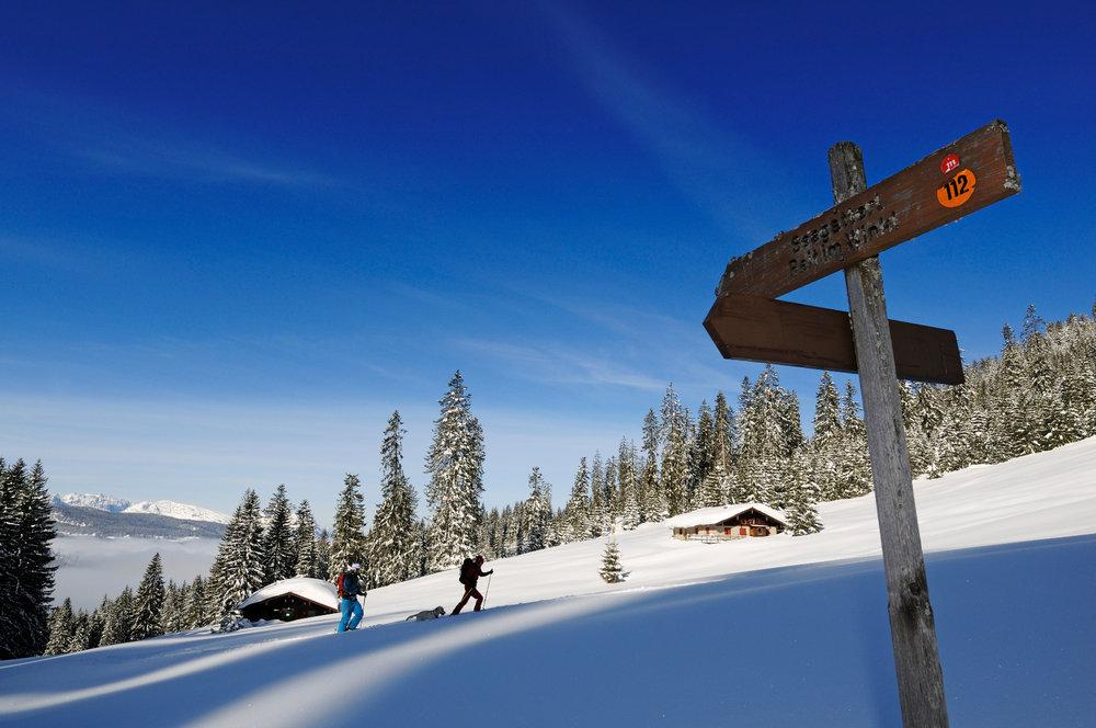 Auf Skitour oberhalb von Reit im Winkl und Seegatterl - © Norbert Eisele-Hein