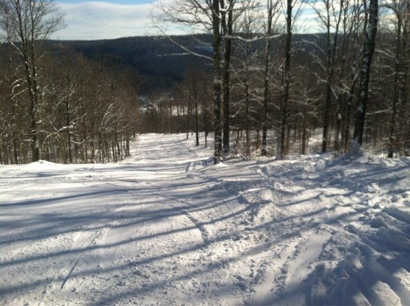 Tree skiing at its best in upstate NY.  Great day with bluebird skies and a high of 12 degrees and NOBODY around :)