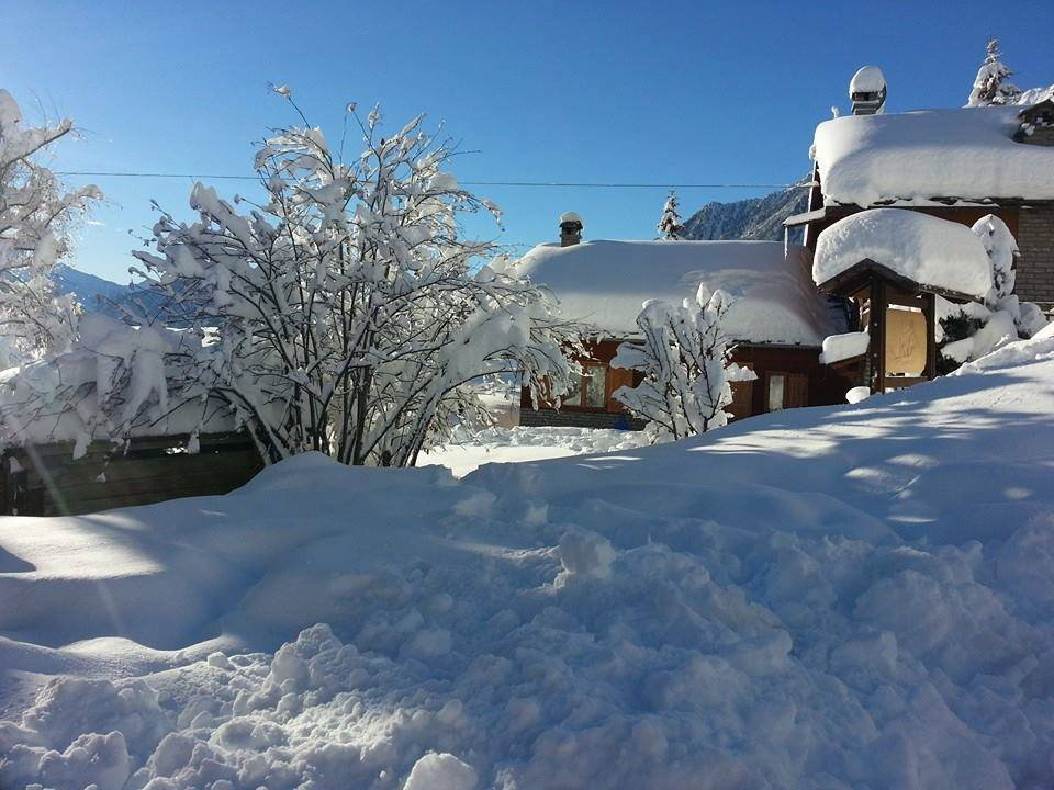 Antagnod - Neve fresca 27 dic 2013 - © Monterosa Ski