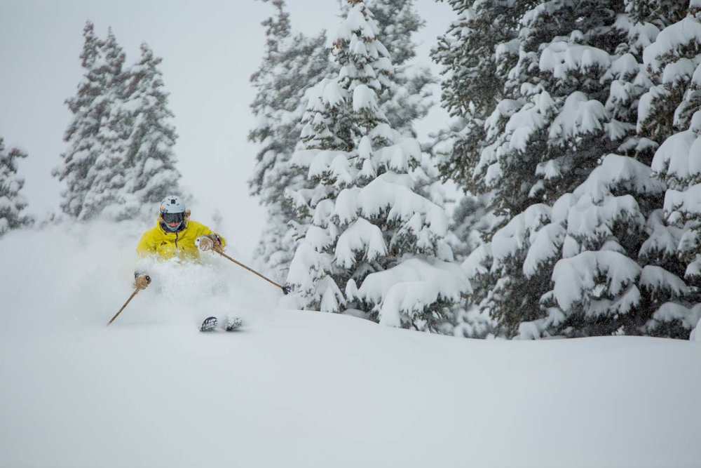 Fresh powder skier, Winter Park. - © Sarah Wieck