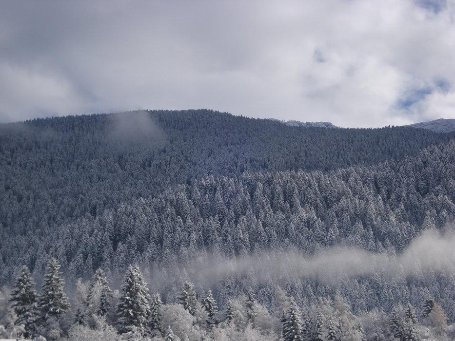 Paganella, 1 Dec 2013