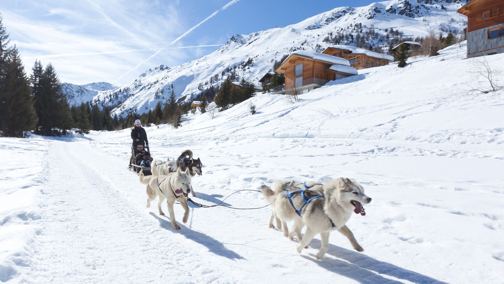 Balade en chiens de traineaux à Thyon - © Thyon-Région Tourisme