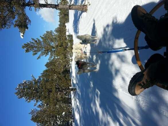 650km of skiable terrain in the Portes du Soleil