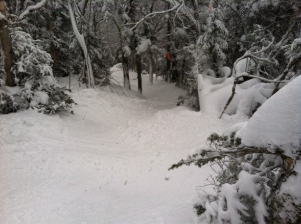 A lil slice of paradise.  Glades were awsome.  Lots of pow.  Low visibility due to heavy fog.  Overall great day.