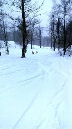 Powder.  Glades are perfect