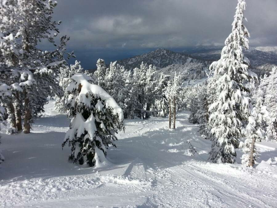 Just great everywhere. moguls nice, trees. I was up there Saturday to tuesday. it was so worth it