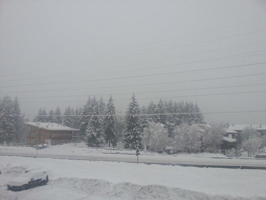 Adamello Ski Jan. 17, 2014