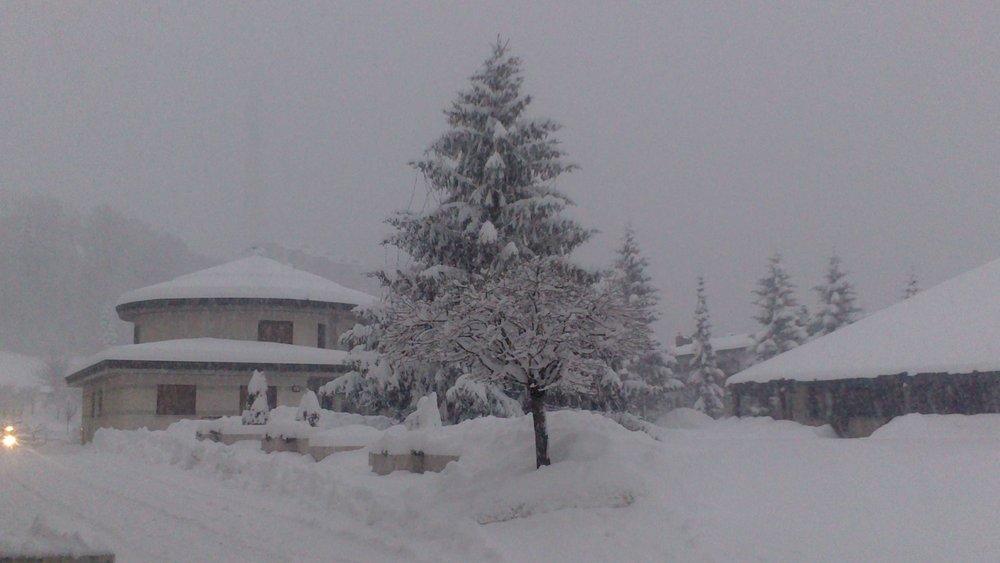 Andalo-Fai della Paganella, Neve fresca 14 Gen 2014