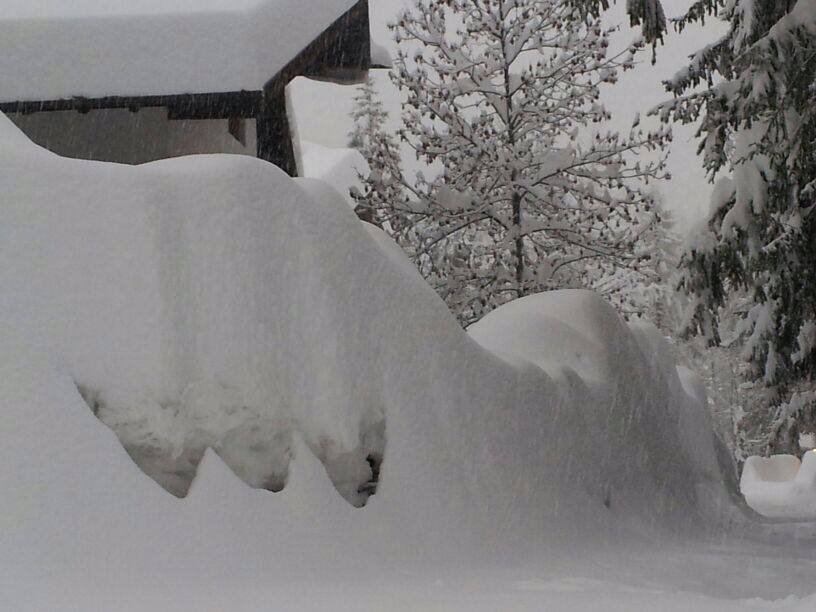 Cortina am 1. Februar 2014