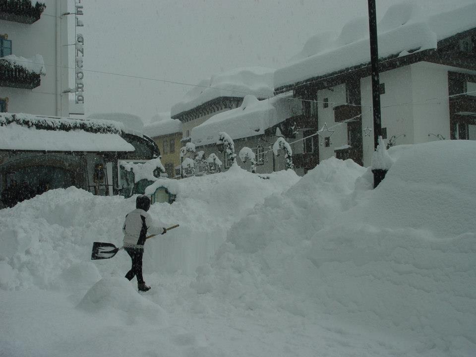 Cortina Jan. 31, 2014