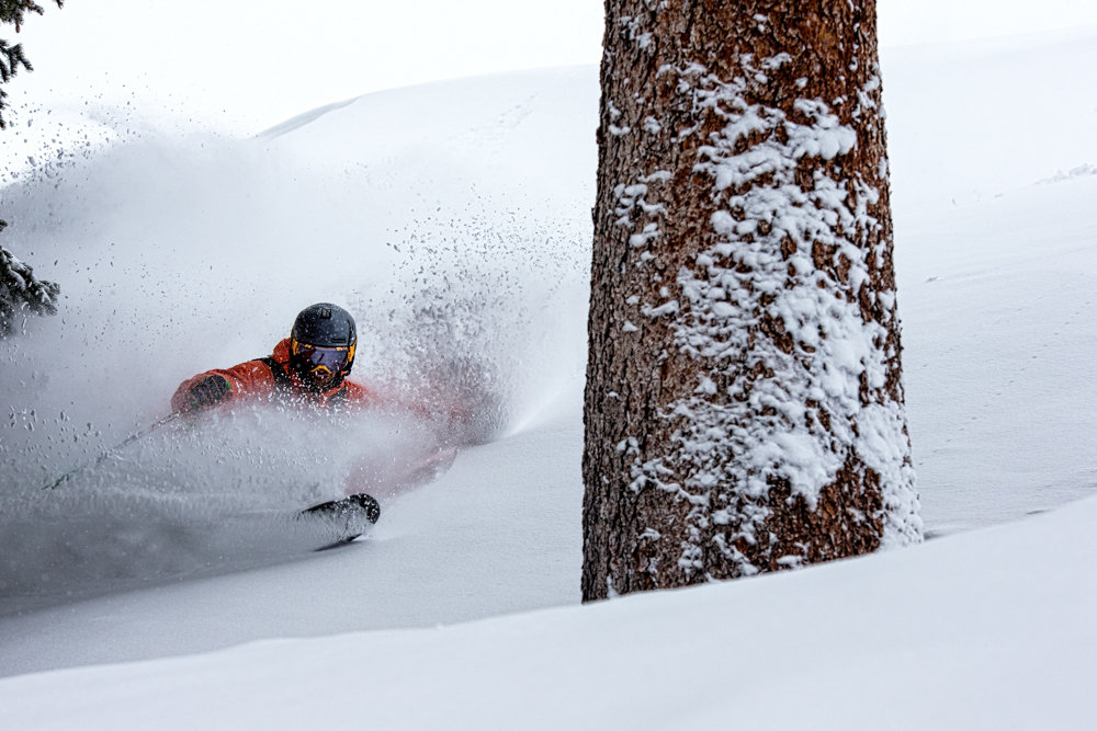 David Moszynski winds through the amazing glades on Highlands. - ©Liam Doran