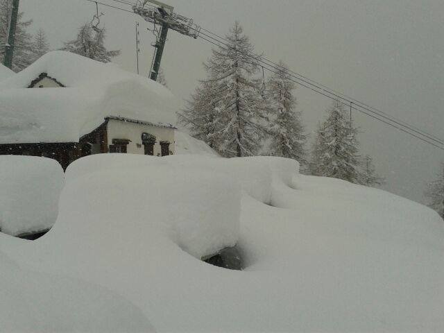 Domobianca, Neve fresca 3 Feb 2014