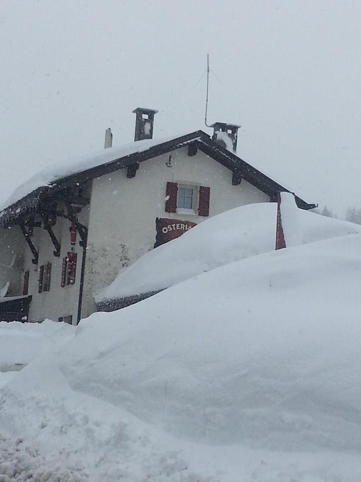 Folgaria, Neve fresca 3 Feb 2014