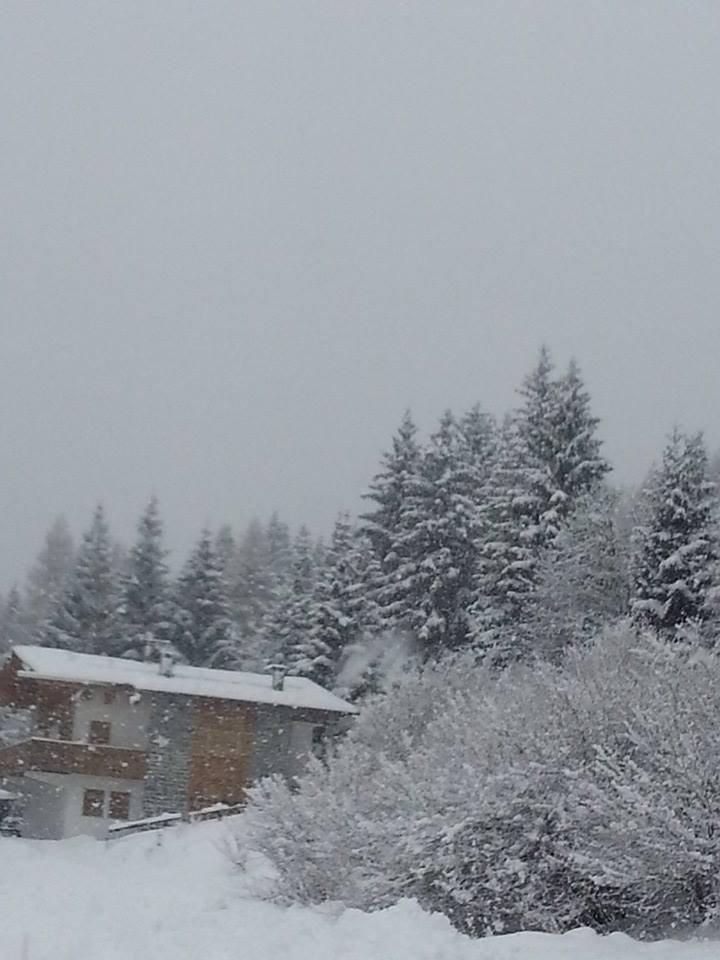 Folgaria - Neve fresca 17 Gen 2014