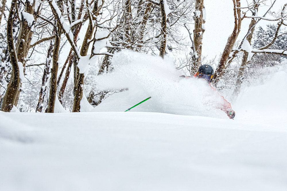 Grazing through the trees to find the deepest powder at Aspen. - ©Liam Doran