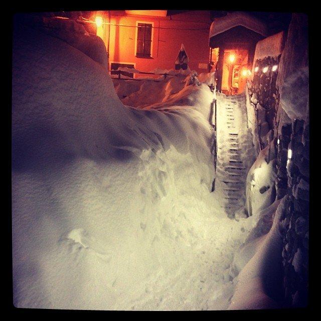 Limone Piemonte, Neve fresca 31 Gen 2014